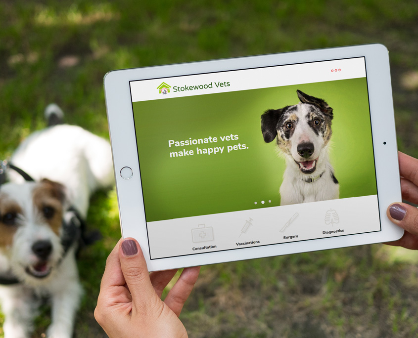 Stokewood Vets Web Design